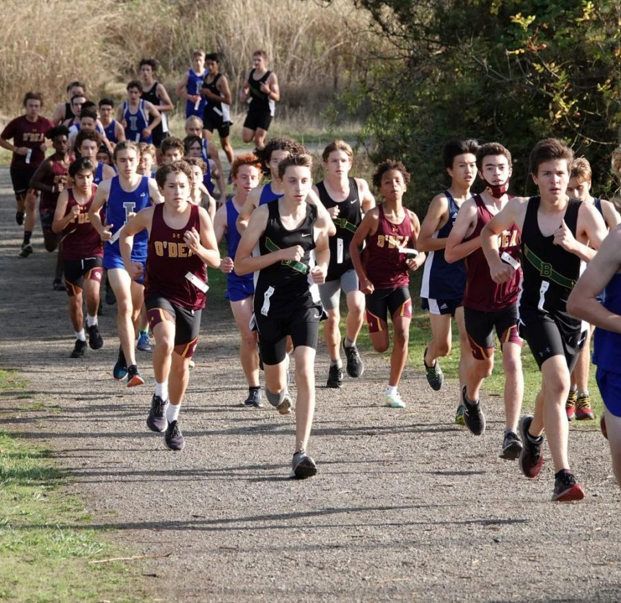 Cross Country Victorious at Magnuson